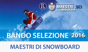 banner_snow